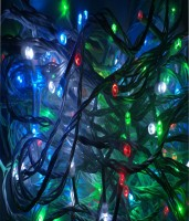 Tejenterprises 710 inch Red, Green, Blue, White Rice Lights(Pack of 1)