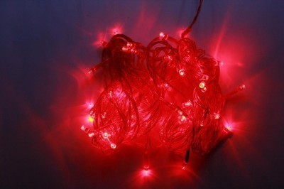 ChristmasTreeShops 150 inch Red Rice Lights