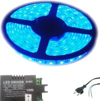 I Play 197 inch Blue Rice Lights(Pack of 1)