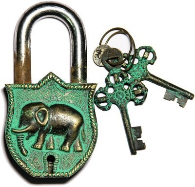 Gathbandhan Elephant Safety Lock