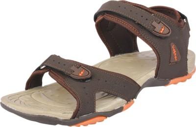 Campus Men Brown, Orange Sandals