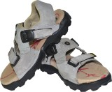 Tim Land Men Grey Sandals