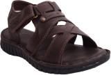 Mardi Gras Men Dark Brown Sandals