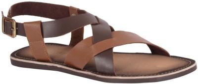Tortoise Men Tan Sandals