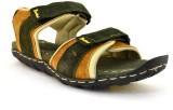 Zoot24 Men Olive:Tan Sandals
