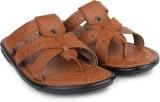 Shoetopia Men Brown Sandals