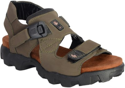 Royal cruzz Men Olive Sandals