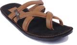 Tripssy Men Black::Brown Sandals