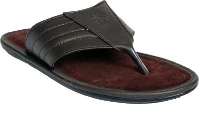 Mr. Polo Men Brown Sandals