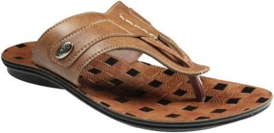 Toyto Men Tan Sandals