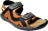 Blackwood Men Black & Tan Sandals