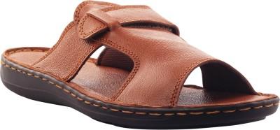 XQZITE Men Tan Sandals