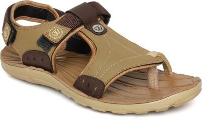 Walkline Boys, Men Brown Sports Sandals