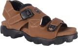 Royal Cruzz Men Tan Sandals