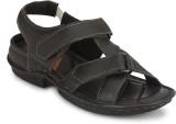 Menfolks Men Brown Sandals