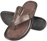Urban Woods Men Brown Sandals