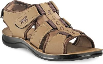 ASCOTT Men Beige Sandals