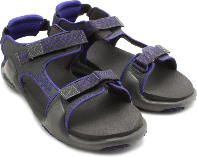 Reebok Trail Blaze Lp Women Women Grey, Purple Sports Sandals