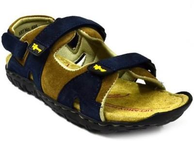 Zoot24 Men Blue, Brown Sandals