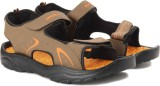 Lotto Men Beige/Orange Sports Sandals