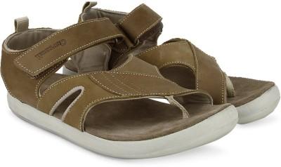 Woodland Men Brown Sports Sandals