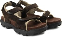 Andrew Scott Men Brown Sandals