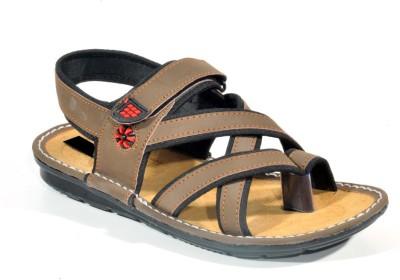 Kohinoor Sandal King Men Brown Sandals