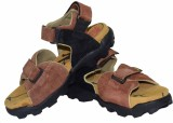 Tim Land Men Tan Sandals