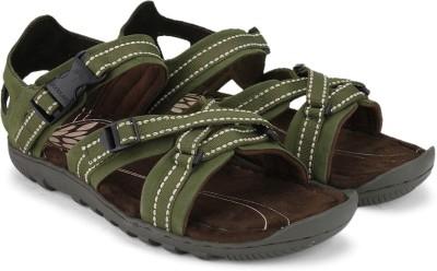 Woodland Men Olive Sandals