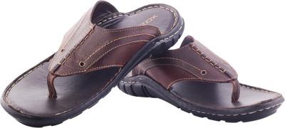 XQZITE Men Brown Sandals
