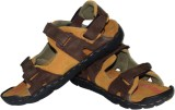 Tiffancy Men Tan,Brown Sandals
