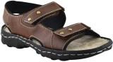 Elvace Men 408,Brown Sandals