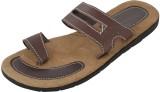 Chichi Men Camel Sandals