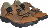 Tim Land Men B Tan Sandals