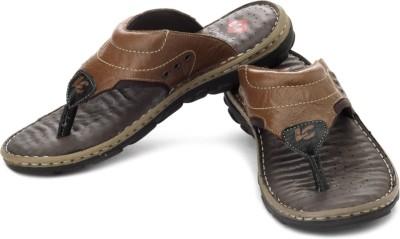 Lee Cooper Men Brown, Tan Sandals
