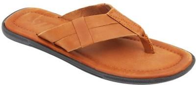ESTD. 1977 Men Tan Sandals