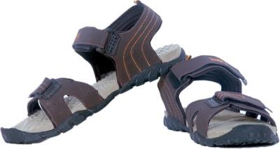 Iwana By Goldstar Men Beige, Brown Sandals