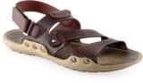 Lets Run Men BROWN Sandals