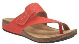 Clarks Women Grenadine Sports Sandals