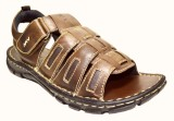 Sizzlers Men Brown Sandals