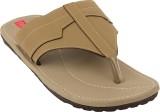 Footrendz Men Grey Sandals
