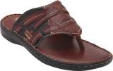 Eagle Comfort Men Brown Sandals