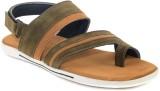 Shoegaro Men Mehndi Green Sandals