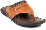 Lee Cooper Men Brown Sandals