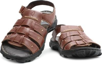 Hush Puppies Men Black, Brown Sandals