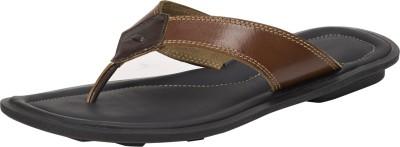 JCube Men Tan Sandals