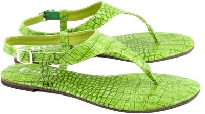 Zotti Croco Women Green Flats