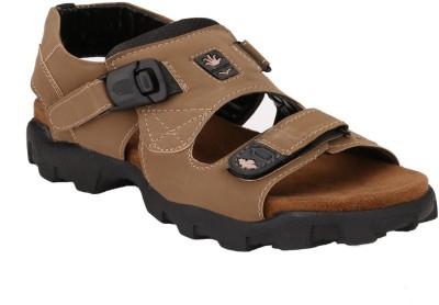 Tiger Wood Men Tan Sandals