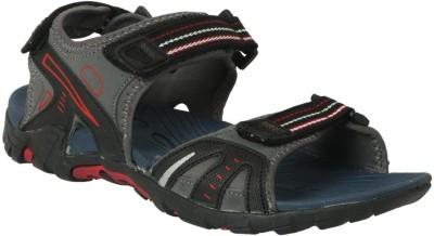 Action Shoes Men Black, Blue Sandals