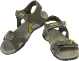 Zedrock Men Mehandi Sandals